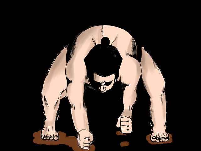 sumo-wrestling 相撲で力士が構えている