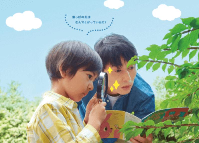 Z会 幼児コース あと伸び力とは:幼児向け通信教育の無料お試しプリント教材