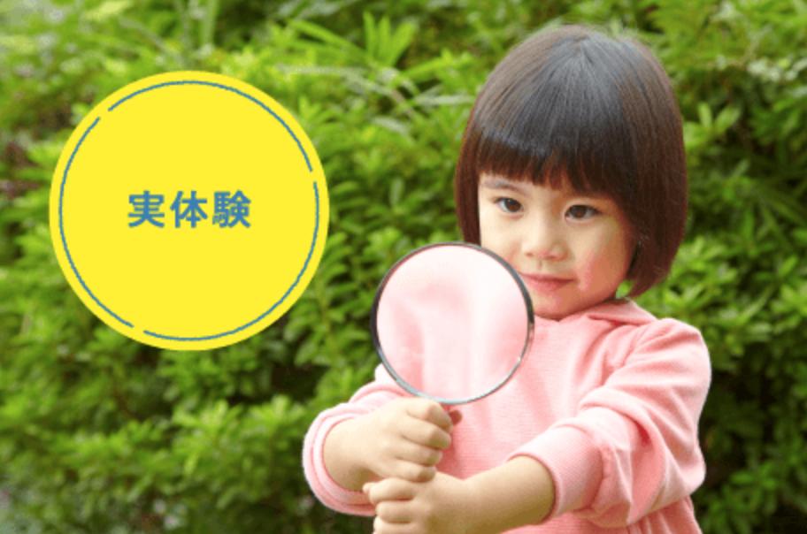 Z会 幼児コース 実体験:幼児向け通信教育の無料お試しプリント教材