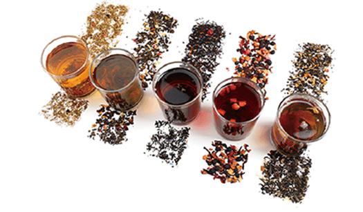 【木の舟】プーアール茶無料テイスティング+全員もらえる豪華特典-イメージ画像