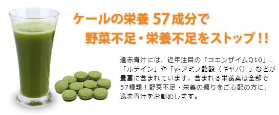 【遠赤青汁】無料サンプル-実際の商品