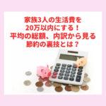 家族3人の生活費を20万以内にする!平均の総額、内訳から見る節約の裏技とは?