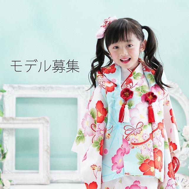 京都瑠璃雛菊_HP画像